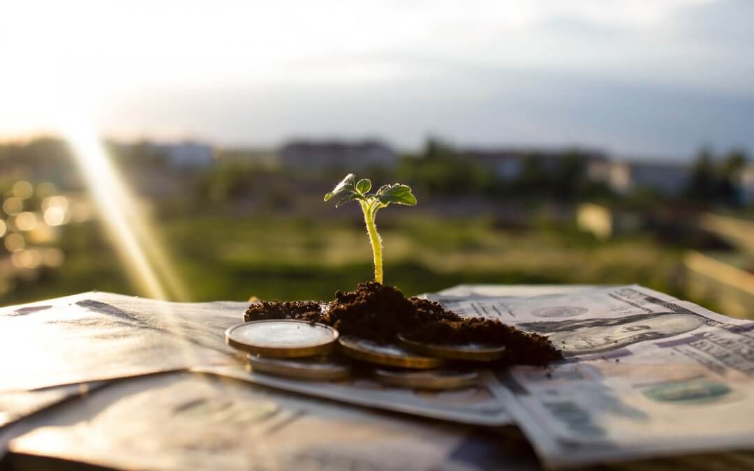 My Values or My Investments… Why Not Both? Implementing ESG