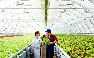R&D Credits in the Agriculture Industry